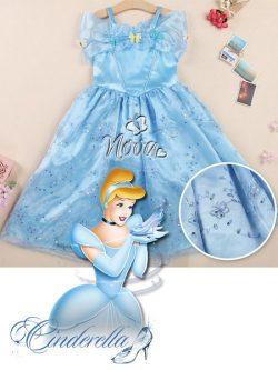 Prinsessenjurk Cinderella Assepoester met vlinders